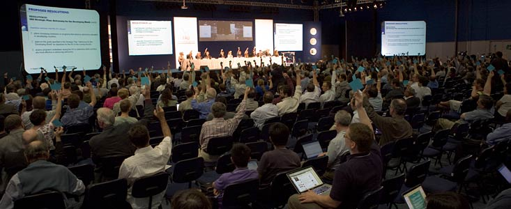 Voting on the IAU Resolution