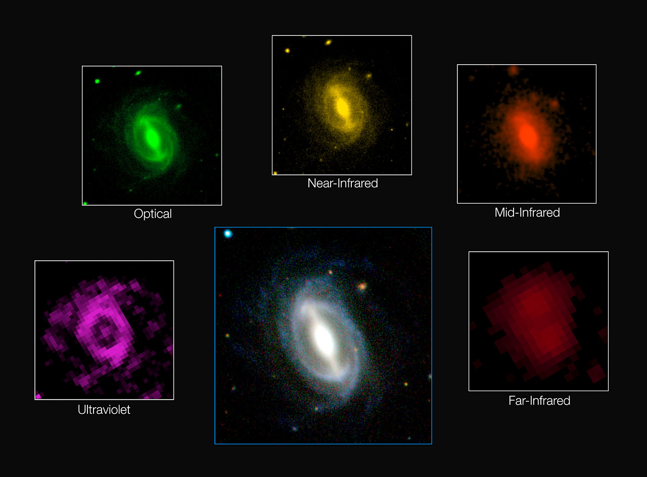 Galaxy images from the GAMA survey