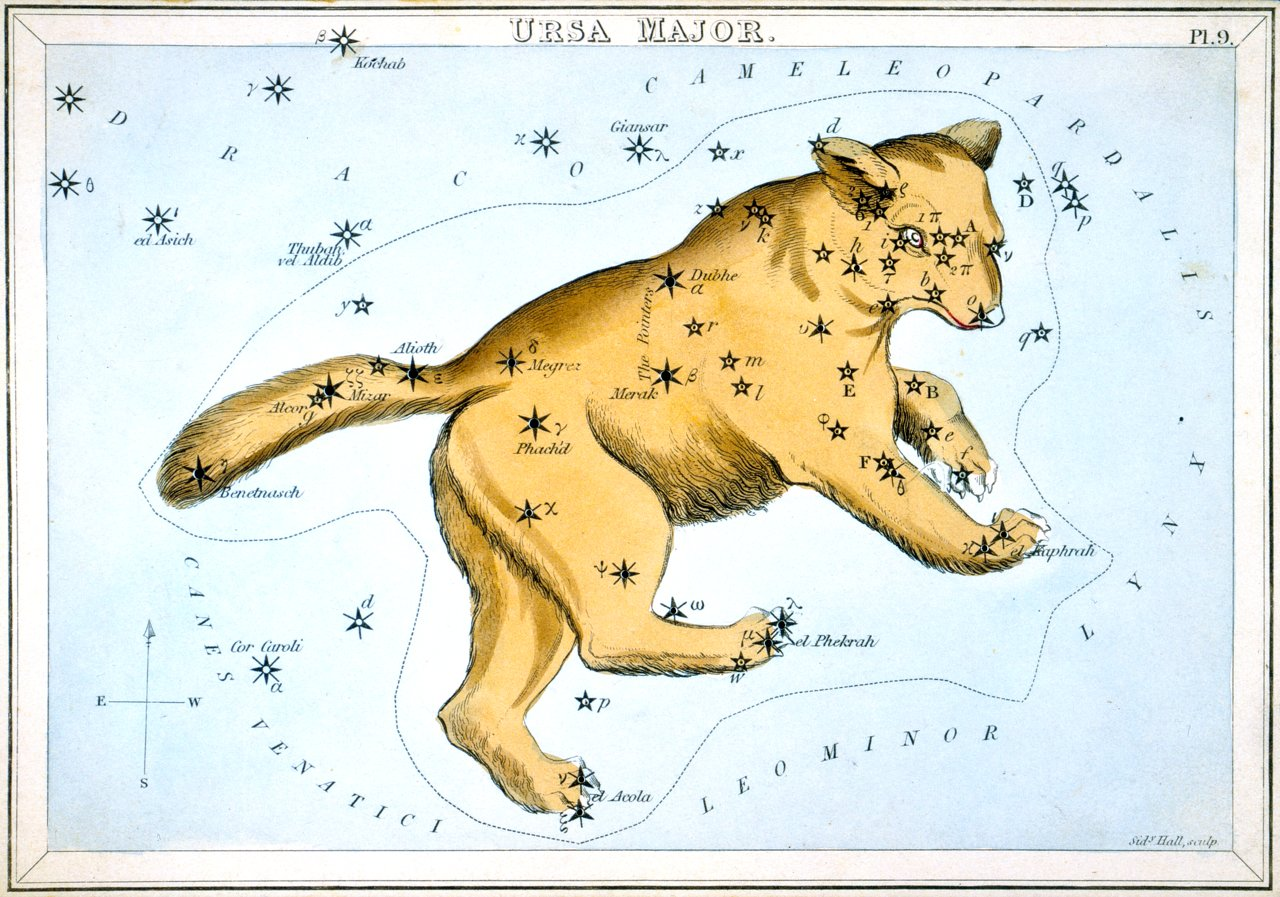 Ursa Major, the Great Bear